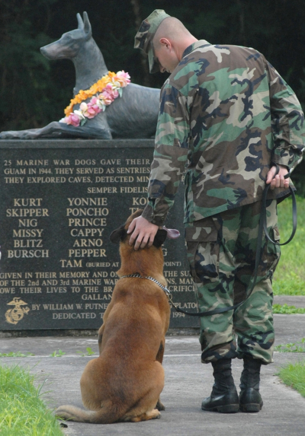 war dog cemetery monument