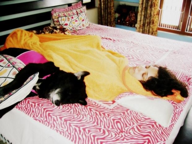 'dog with blog kaalicharan sleeping', Wake up Neo